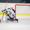 Hip Blog (III): Hip Injuries in Hockey Goalies