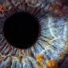 Could a Cure for Blindness Exist? Scientists Believe so