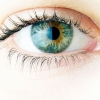 The Danger Diabetes Presents to the Health of your Eyes