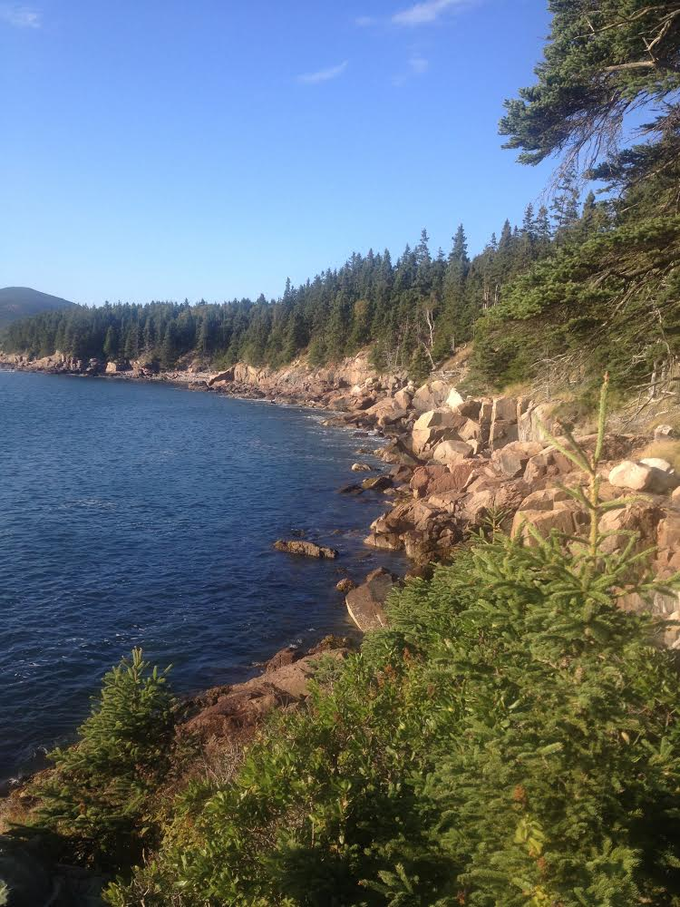 13th Annual Downeast Ophthalmology Symposium, Bar Harbor, Maine