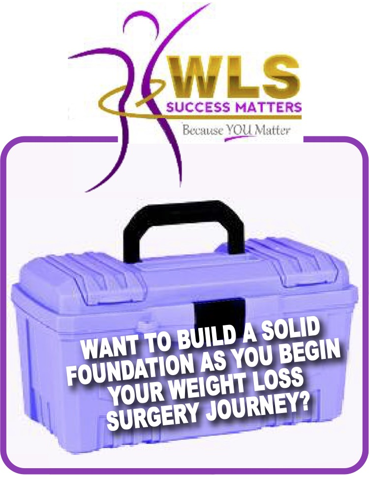 WLS, WLS success matters, SUCCESS HABIT FAST TRACK CLASS
